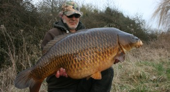 The Mighty Swirly Common!